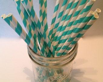 Aqua Blue Stripe Paper Straws
