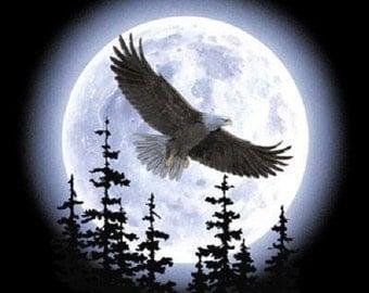 Eagle Moon Silhouette T SHIRT, Sweatshirt, Quilt Fabric Block Item no. 019c