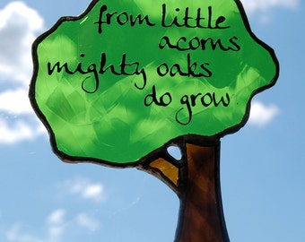 Little Acorns lightcatcher