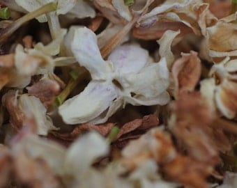 Dried Arabian Jasmine (Sambac) -  Naturally Air Dried Full Flowers