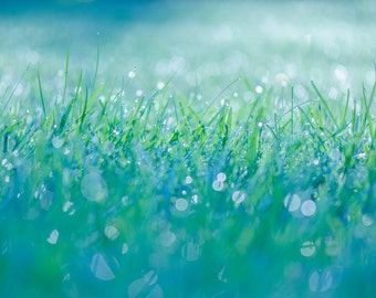 Abstract, 16x20 Canvas, Abstract Grasses, Dewdrops, Blue and Green, Sparkle,Canvas, Stretched Canvas, Wall hanging, home decor