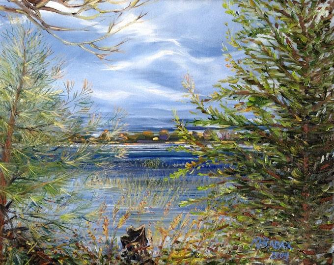 Oden Island View