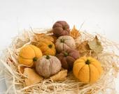 Needle felted pumpkins, Set of 7,  Rustic pumpkin ornament, Thanksgiving decor,  Halloween gift decor, Fall decor, Miniatures, MADE TO ORDER