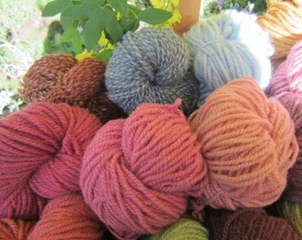 South of the Border Pink Cochineal Creates Sizzle in Wool Yarn