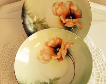 Vintage Pair of Porcelain Berry Bowls made in Germany