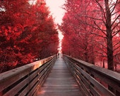 Romantic photograph Holding hands, Red Alley, Boardwalk Red Wall decor