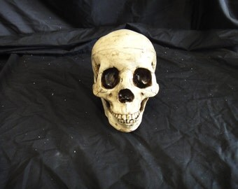 Rotted skull