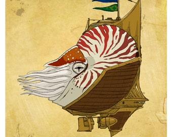 Argonauta Corsair