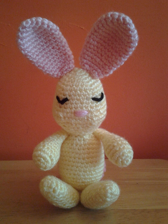 Amigurumi Sleeping Bunny : SLEEPING BEAUTY Bunny Rabbit Crochet Amigurumi Crochet