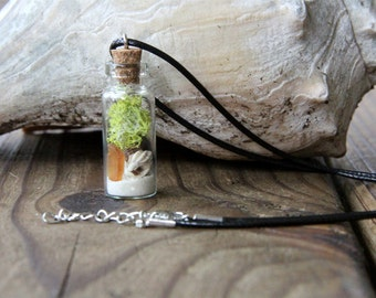 Sea Shell Beach Glass Bottle Necklace