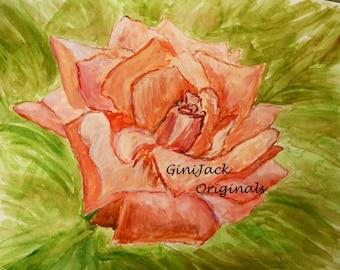 Original Watercolor Painting, Peach Rose, 8 X 10