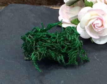 Moss, Dried Moss, Jewelry Making Moss, Jewelry Terrarium Moss, Fairy Moss, PF2003