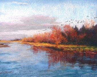 Sandhill Cranes Flying Home for the Evening Over the Platte River, Spring Migration