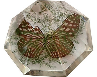 1960s Lucite Butterfly Paperweight