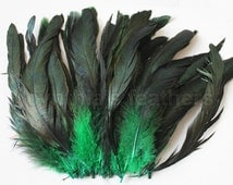 "16g (0.6ozs) 6-8"" half bronze emerald green schlappen coque rooster tail feathers, ~100pc. SKU: 7F22"