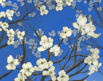 "Floral painting print, Original digital painting by Nancy Long ""Dogwood Trees""  A deep blue sky and branches of dogwood. Nancylongdesigns"