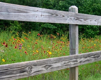 Wildflowers Fenced-in, Various Sizes, Includes Shipping to U.S. & Canada