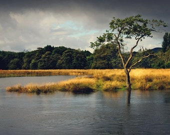 River Teith In Flood, original fine art photography, print, landscape, callander, mountain, tree, rain, scotland, river, water