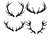 Set 4 Silhouette Buck Antlers...Solid Fill Machine Embroidery DESIGN NO. 71