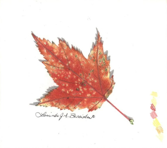 Feuille d 39 rable dessin automne automne itsy impression - Feuille erable dessin ...