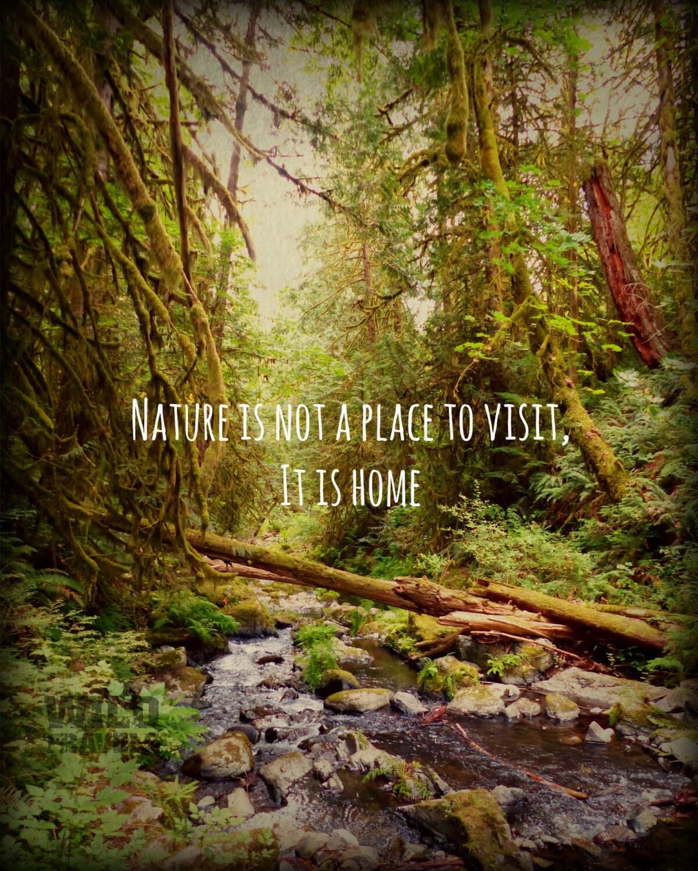 Foto Leinwand Kanada Vancouver Island