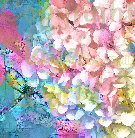 Art Print - Hydrangea - Dragonfly - Colorful Floral Art , Art Print, dragonfly art, flower and dragonfly,  by Claire Bull