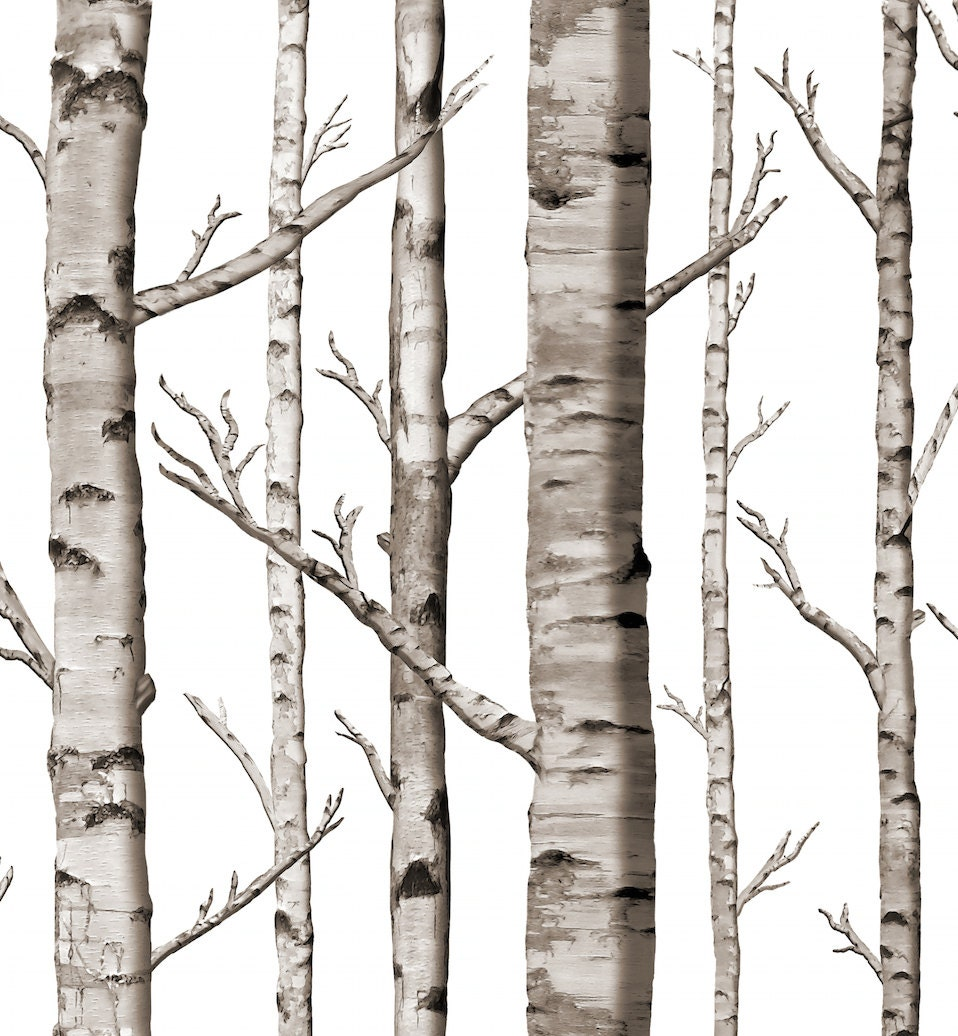 Birch grove removable peel 39 n stick by willowlanetextiles - Birch tree wallpaper peel and stick ...