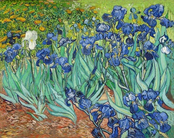 "Vincent Van Gogh ""Irises"" c1888 Reproduction Digital Print Impressionism Flowers Floral"