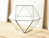 Large Geometric Glass Terrarium / Cuboctahedron / Handmade Glass Planter / Modern Planter for Indoor Gardening / Stained Glass Terrarium