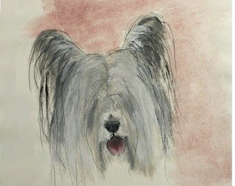 Skye Terrier Dog Print