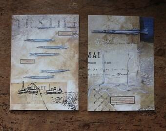 Lot de deux cartes postales.Poissons épingles