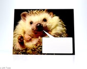 Word Bubble Hedgehog Postcard, set of 2, O QLY, HERMIONE