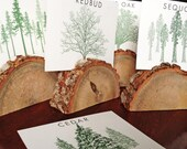 RESERVE for Courtney TREES Among the Forest Greeting Gift Cards Wedding Table Cards Woodsy Rustic Wedding Tree Types