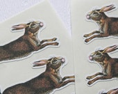 16 Jack Rabbit Stickers, Animal Stickers, Bunny Stickers, Envelope Seals, Easter Stickers, Gift Wrapping, Unique Stickers, Fall Stickers