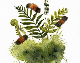 Woolly Bears and Ferns - nature art, ferns, caterpillars and ferns -Archival Print of original watercolor painting
