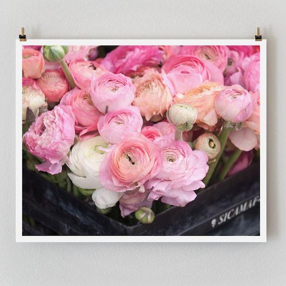 "Paris Photography, ""Pink Ranunculus"" Large Art Print, Floral Wall Art, Landscape Fine Art Photography Paris Print, Girlfriend Gift"