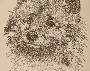 Keeshond - Artist Kline draws his dog art using only words. Signed 11x17 Lithograph 38/500 - Your Dogs Name added Free