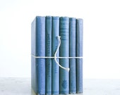 Vintage French Book Bundle / Blue School Books