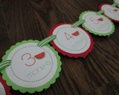 READY to SHIP Wonderful Watermelon: Just Born/0-12 month Watermelon First Birthday Photo Picture Banner. First Year Banner. Summer Fruit