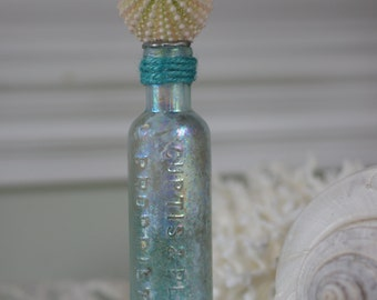 Vintage Aqua Glass Medicine Bottle with Sea Urchin - Beach Decor