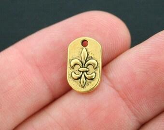 15 Fleur de lis Charms Antique Gold Tone - GC409