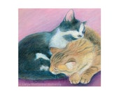 """Two sleeping, cuddling kittens or cats curled up together - """"Yin & Yang"""" - Blank Note Card - Greeting Card, Stationery, Just Because"""