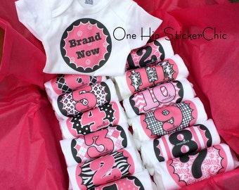 Set of 12 Month 2 Month Milestone Baby Girl Snap T-Shirts, Shower Gift Set Collection