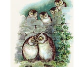 Loving Owls Card   Wedding Greeting Card   Anniversary Card
