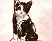 """Art Original Watercolor """"Cat """""""