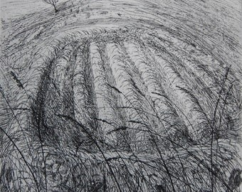 Small hayfield, skylark singing, etching by Flora McLachlan, croft, hay, grasses, earth walls, mown hay, mountainside, Skye, lark