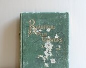 1880s Beautiful Wild Flowers Book D Lothorp