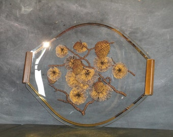 Mid Century Modern Acrylic Lucite Teak Handled Serving Tray Pine Cones Brown Gold Tan