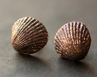 Metallic Seashell Earrings. Clam Shell Earrings. Bronze Post Earrings. Beach Earrings. Sea Shell Earrings. Stud Earrings. Handmade Jewelry.