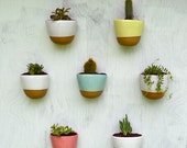 4 Stoneware Wall Planters SAVE 15%